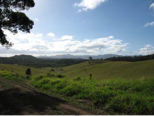 hill-side